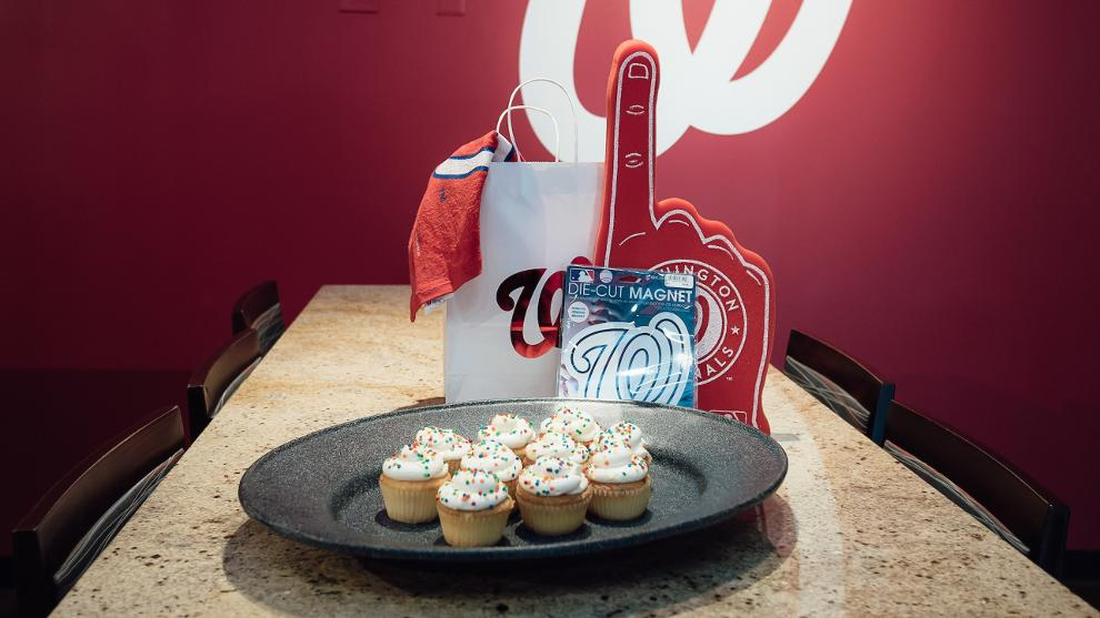 Birthday Parties At Nationals Park