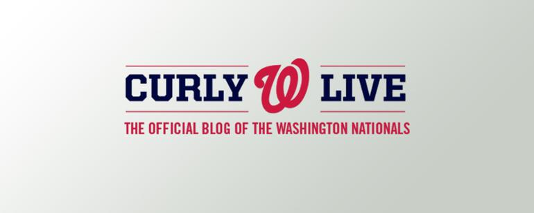picture relating to Washington Nationals Printable Schedule identified as Nationals Lover Central Washington Nationals